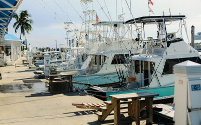 Boat Financing 101: Everything You Need to Know About Boat and Marine Loans